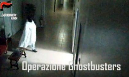 Ladro di opere d'arte travestito da fantasma: l'incredibile VIDEO