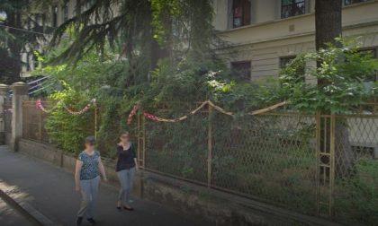 Possibili disagi viabilistici per l'abbattimento di un albero storico nel cortile della scuola