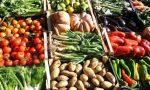 """""""Colori e sapori di Rosate"""": domenica mostra mercato"""