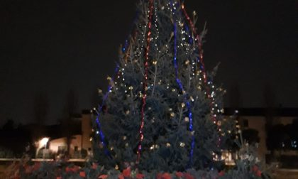Albero di Natale in piazza caduto per il vento