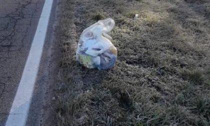 Gudo, rifiuti gettati in strada rivelano la sua identità: multato
