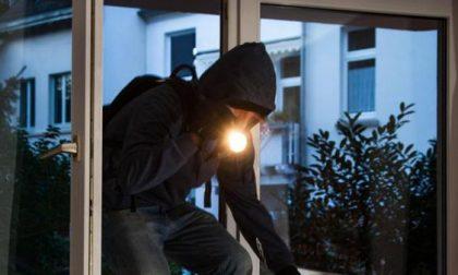Arrestati sette ladri professionisti di beni di lusso