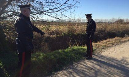 """""""Safari"""" a caccia di nutrie: arrestato, il fucile finisce al Ris di Parma"""