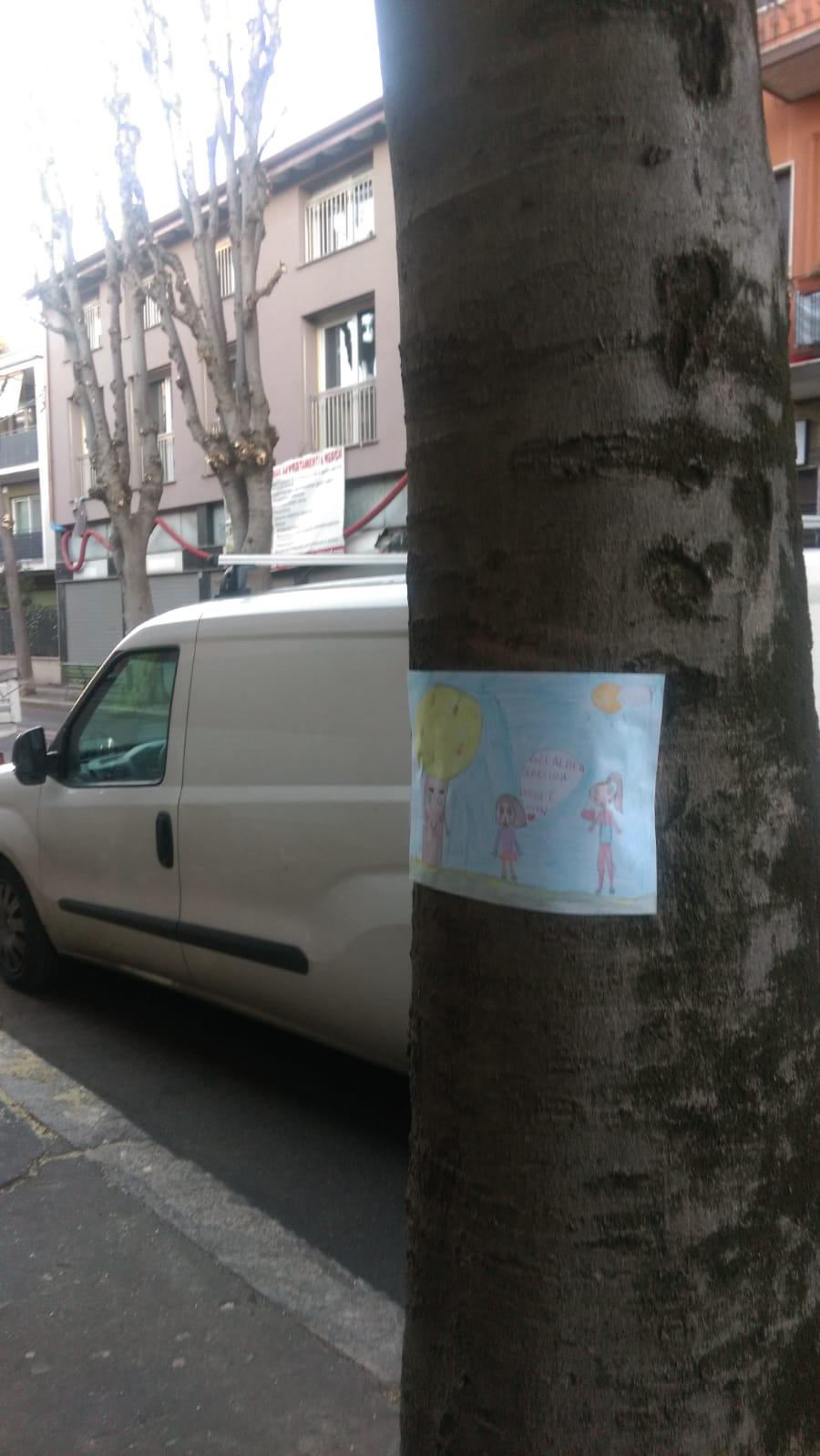 alberi abbattuti saronno via roma