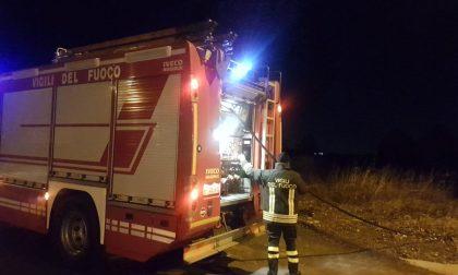 Incendio di sterpaglie a Bollate: pompieri in azione