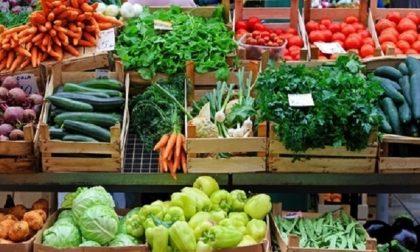 Gaggiano, il mercato contadino in piazza della Repubblica
