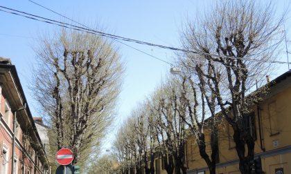 Il Comitato Salva Via Roma scrive al sindaco di Saronno