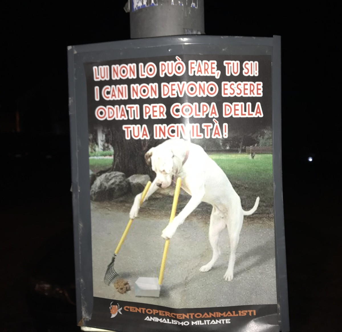 padroni di cani incivili