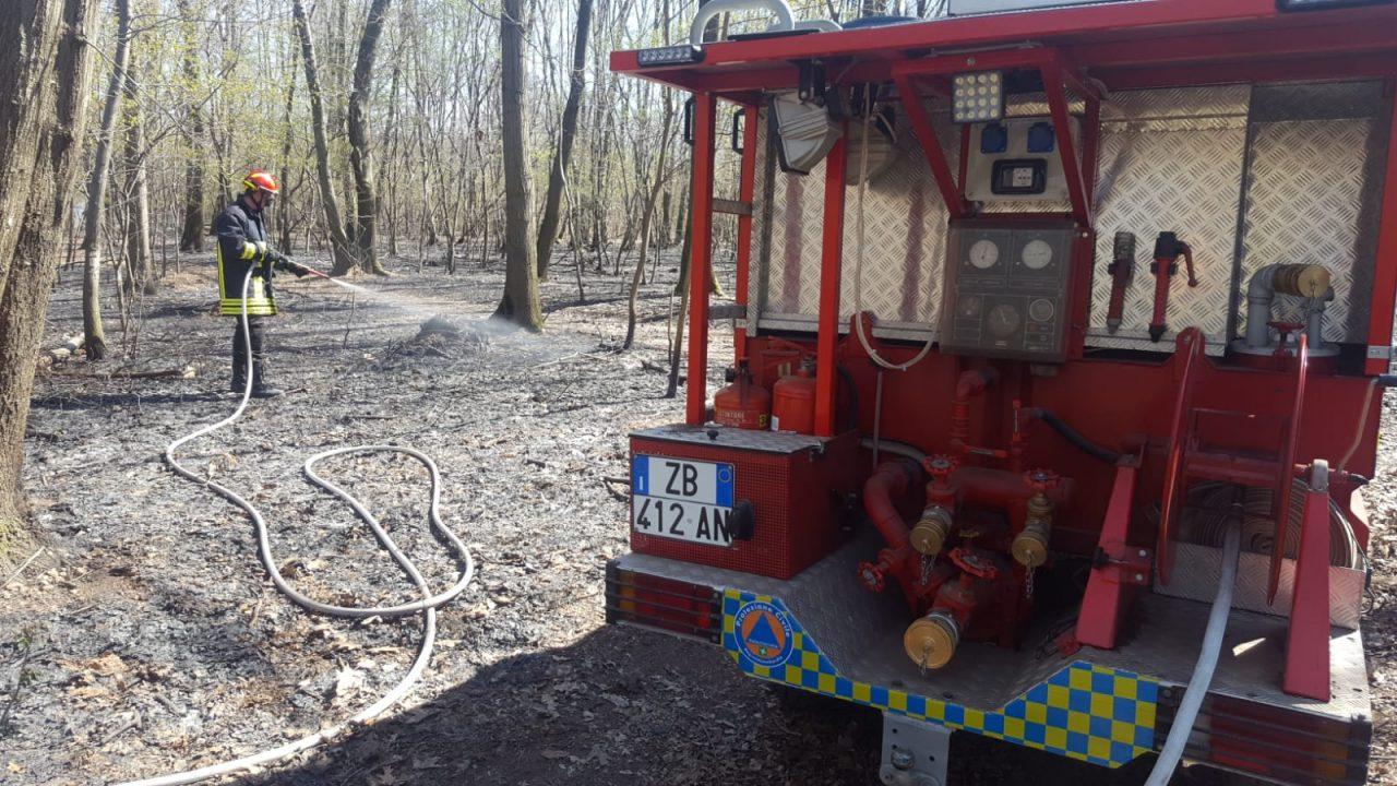Dairago, incendio boschi della Maddalena per forte vento