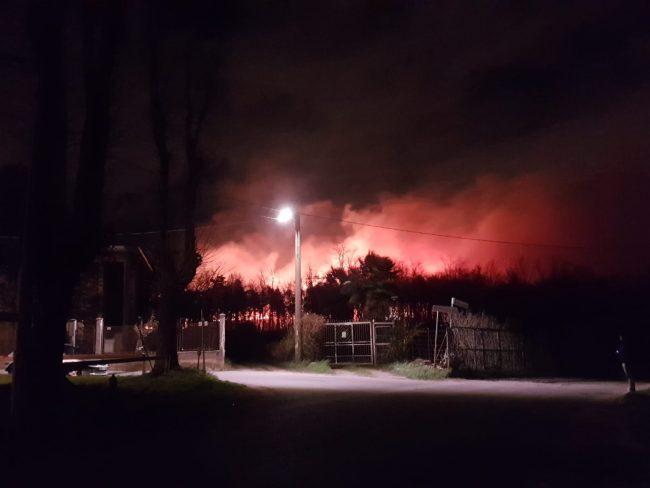 Mega  incendio ad Abbiate in fiamme il Parco Pineta