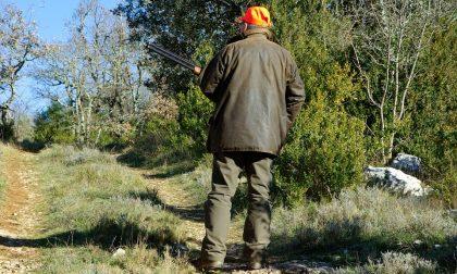 Bracconieri uccidono un capriolo nel Bosco Wwf di Vanzago