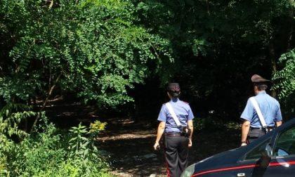 Spaccio nei boschi comaschi: il Sottosegretario Molteni al Comitato Ordine e Sicurezza Pubblica