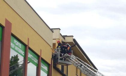 Mirko Rosa chiuso in casa? Arrivano pompieri e carabinieri FOTO