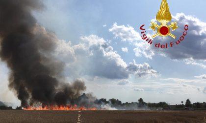Incendio tra Saronno e Gerenzano, 50mila metri quadrati in cenere FOTO E VIDEO