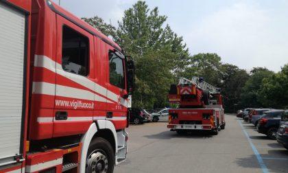 Ramo pericolante a Legnano: pompieri in azione