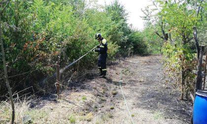 Incendio a Cascina Gatta: volontari in azione da ore FOTO