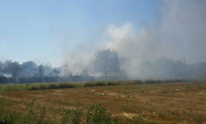 Colonna di fumo e fiamme a pochi metri dalla cartiera