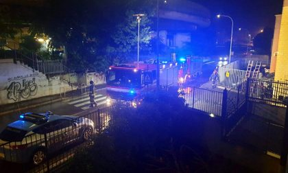 Rho: due molotov contro la concessionaria appena aperta