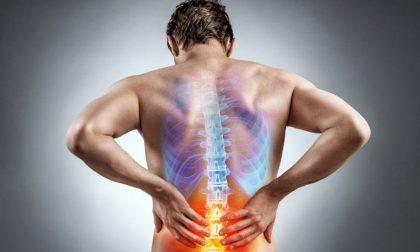 Cerchi un fisioterapista a Milano? Ecco qualche consiglio utile