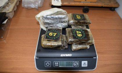 Retata nei boschi della droga tra Guanzate e Cirimido