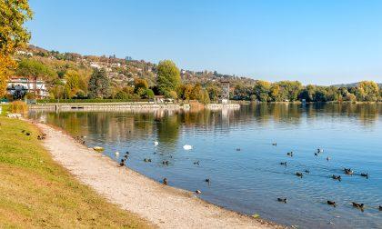"""Risanamento Lago di Varese, la proposta: """"Un euro per ogni abitante"""""""
