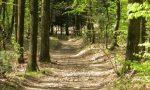 Sicurezza nel Parco Pineta, Fratelli d'Italia vuole chiudere le strade: Si entra solo col telepass