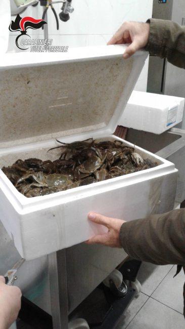 pescherie cinesi