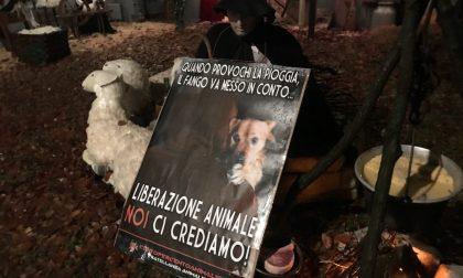 Sagra di Sant'Antonio Abate: iniziano le proteste degli animalisti