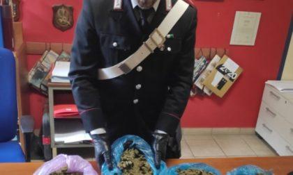 In casa aveva due chili di droga, arrestato un 22enne a Lomazzo