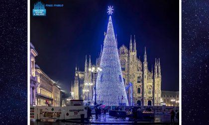 L'albero in piazza Duomo visitato da più di 554mila persone