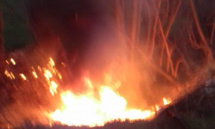 Sterpaglie a fuoco: arrivano i pompieri FOTO