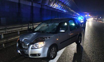 In bici in autostrada: travolto e ucciso