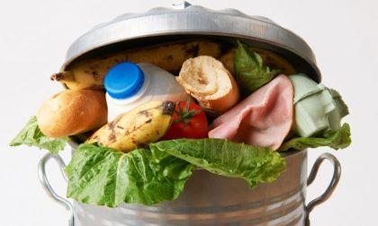 Spreco alimentare: a Venegono i negozi che donano cibo pagano meno tasse