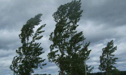 Allerta arancione della Protezione Civile per rischio vento forte