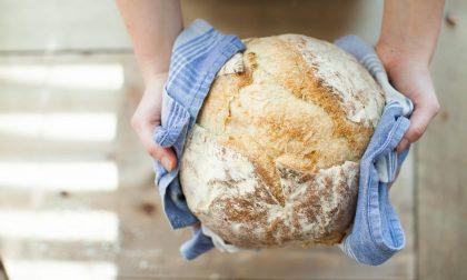 Il pane della solidarietà ogni giorno fuori dal Comune