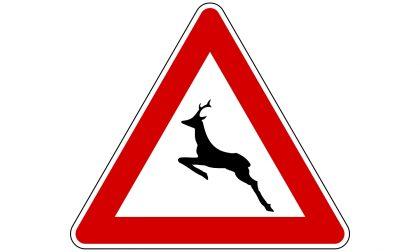 Motociclista in autostrada si trova davanti un cervo