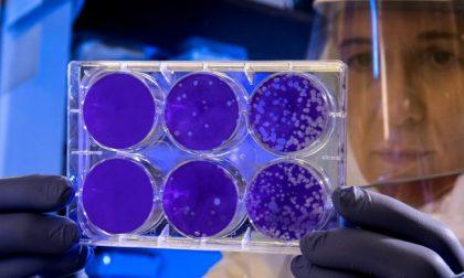 Coronavirus, un nuovo contagio a Turbigo