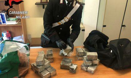 Oltre 13 chili di hashish nascosti in casa: arrestato pusher