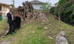 Vandalizzata la Ghiacciaia a Castano: l'ira del sindaco – LE FOTO