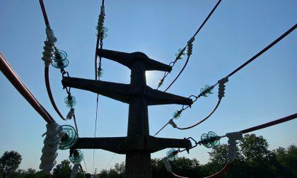 Isolati i fili elettrici per salvare gli uccelli FOTO