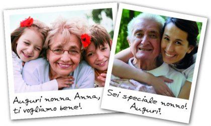 La Festa dei Nonni sta arrivando! Fai un augurio speciale con Settegiorni