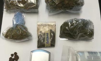 Nascondeva in casa una serra di marijuana e oltre 100 grammi di droghe varie