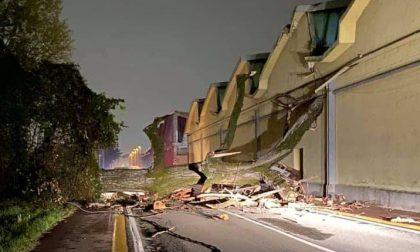 Albero di 20 metri cade sulla strada crollando su ditta e cavi dell'elettricità FOTO