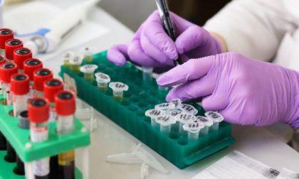 Coronavirus, 16 contagiati e un altro decesso