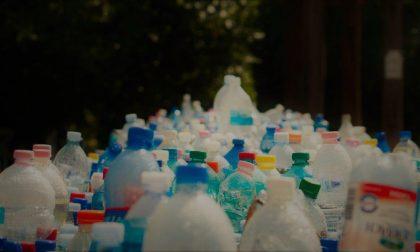Ecospedia, l'App per fare una spesa plastic free