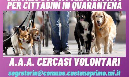 Covid-19, a Castano cercano volontari per il servizio dog sitter
