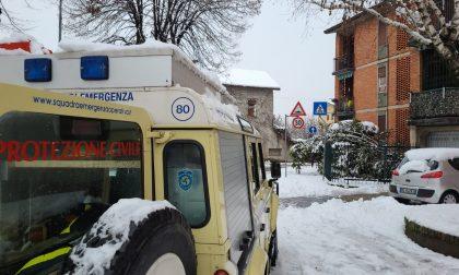 La neve e le sue conseguenze: crolla un pino a Bollate, cittadini al buio a Senago
