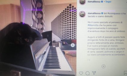Malika Ayane dice addio, su Instragram, al suo amato gatto nero