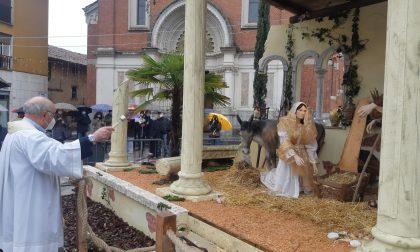 Inaugurato il presepe di Olona Viva e l'albero di Natale del Comune FOTO