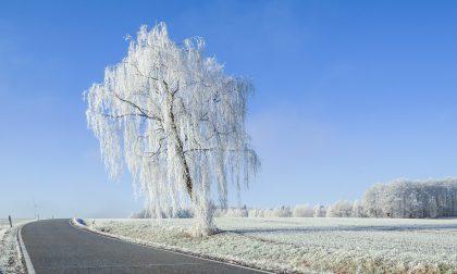Neve a Capodanno? Forse, ma nel caso pochissimi centimetri | Previsioni Meteo Lombardia